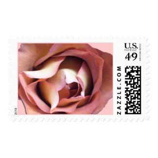 Postage Stamps - USPS - Dusky Rose