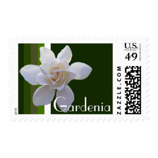 Postage Stamps - USPS - Gardenia on Stripes