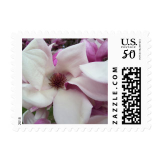 Postage Stamps - USPS - Saucer Magnolia Bloom