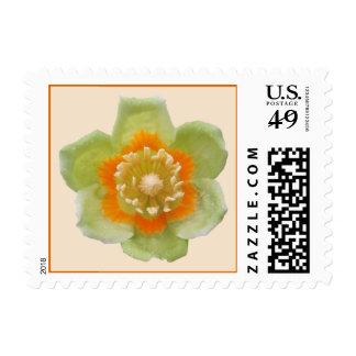 Postage Stamps - USPS - Tulip Poplar Tulip Cream