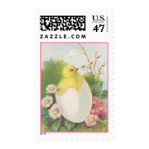 Postage Stamps Vintage Chicken Peep Hatch Spring
