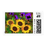 Postage Sunflowers And Pansies Stamps