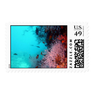 Postage-Underwater fish Stamp