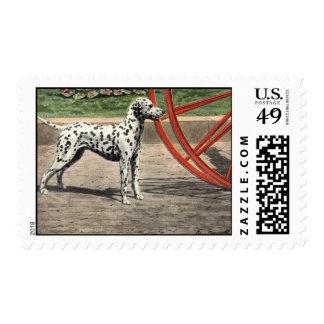 Postage-Vintage Dalmatian Picture Postage Stamp
