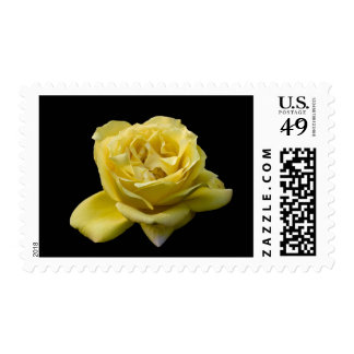 Postage, Yellow Rose Postage