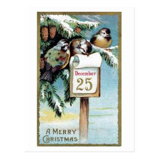 """""""Postal 1900 de los pájaros del navidad"""" - Postal"""