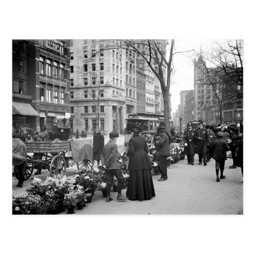 Postal 1904 de Pascua Fowers NYC