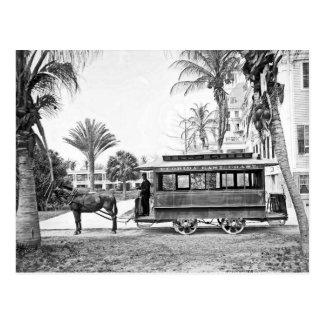 Postal 1909 de la carretilla de la Florida del