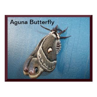 Postal #2 de la mariposa de Aguna