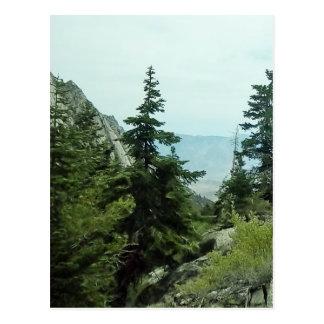 Postal #5 de la opinión del rastro del Monte