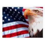 Postal 6 de American Eagle