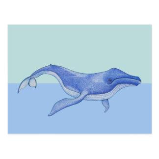 Postal a solas de la ballena
