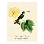 Postal agarrada del arte del colibrí del inca