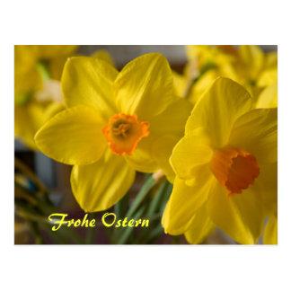 Postal amarilla de Frohe Ostern de los narcisos
