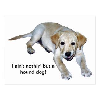 Postal amarilla del perrito de Labrador