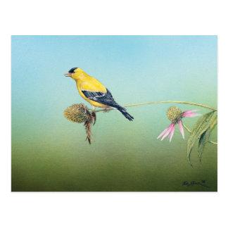 Postal americana del Goldfinch