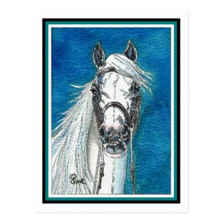Postal andaluz del arte del caballo