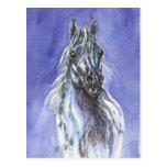 Postal árabe del arte del caballo