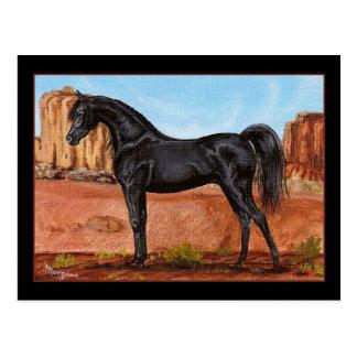 Postal árabe del caballo de la maravilla del barra