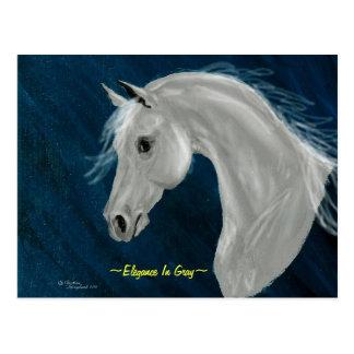 Postal árabe gris del caballo