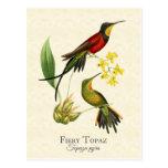 Postal ardiente del arte de los colibríes del Topa