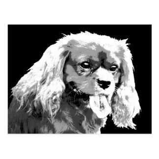 Postal arrogante del perro de aguas