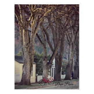Postal - Arrowtown
