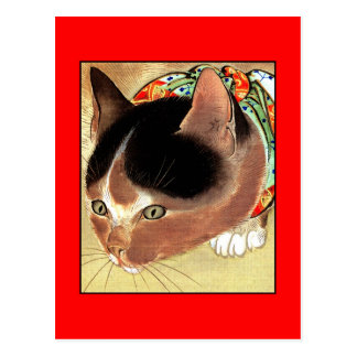"""Postal: Arte del gato del vintage: """"Gato curioso Tarjeta Postal"""
