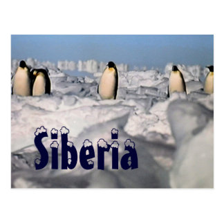 Postal ártica del invierno de Siberia