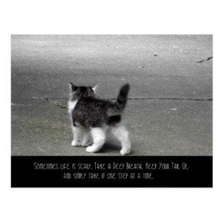 Postal ascendente de la cola (gatito)