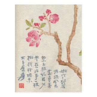 Postal asiática del vintage de la flor de cerezo
