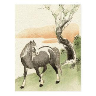 Postal asiática del vintage del caballo