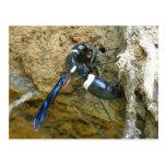 Postal azul de la avispa del embadurnador de fango