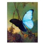 Postal azul de la mariposa de Morpho