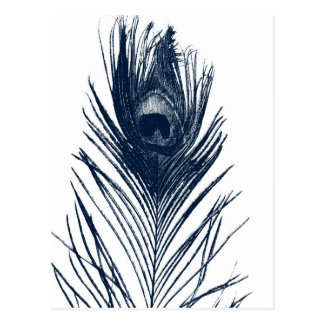 Postal azul marino de la pluma del pavo real