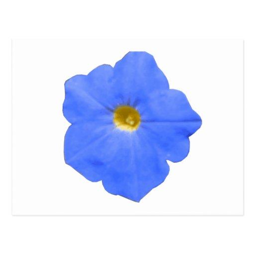 Postal azul y amarilla de la petunia