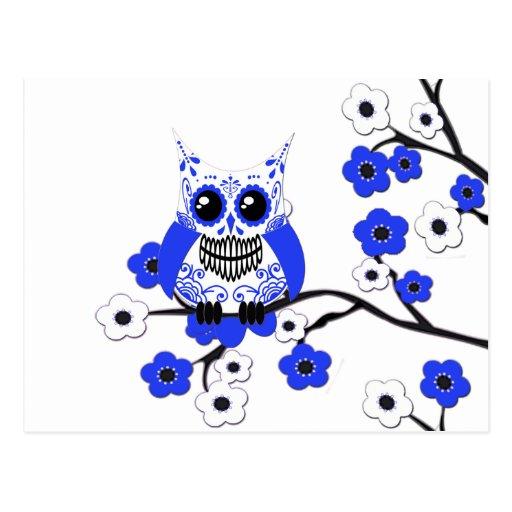 Postal blanca azul del búho de las flores de cerez