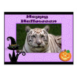 Postal blanca de Halloween del tigre