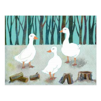 Postal blanca de los gansos