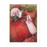 Postal blanca de los ratones