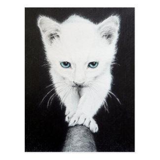 Postal blanca linda del arte del lápiz del gatito