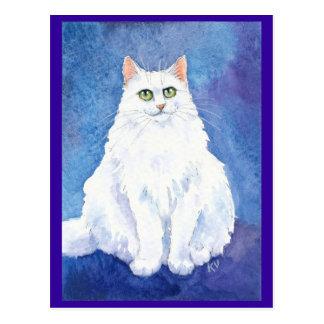 Postal blanca linda del gato o del gatito