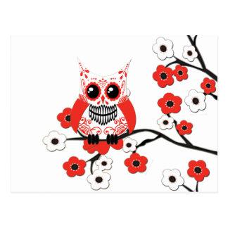 Postal blanca roja del búho de la flor de cerezo