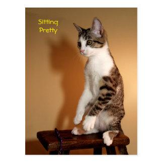 Postal bonita del gato de Tabby que se sienta