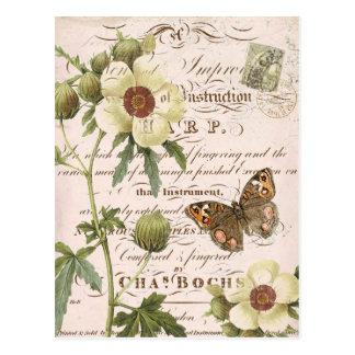 Postal botánica floral del vintage