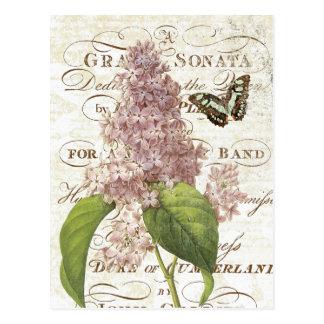 Postal botánica francesa de la lila del vintage