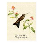 Postal Bronzy del arte del colibrí del inca