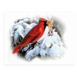 Postal cardinal del día de fiesta