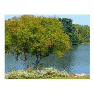 Postal centenaria del lago