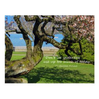 Postal cherokee del proverbio del cerezo